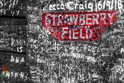 Strawberri fields